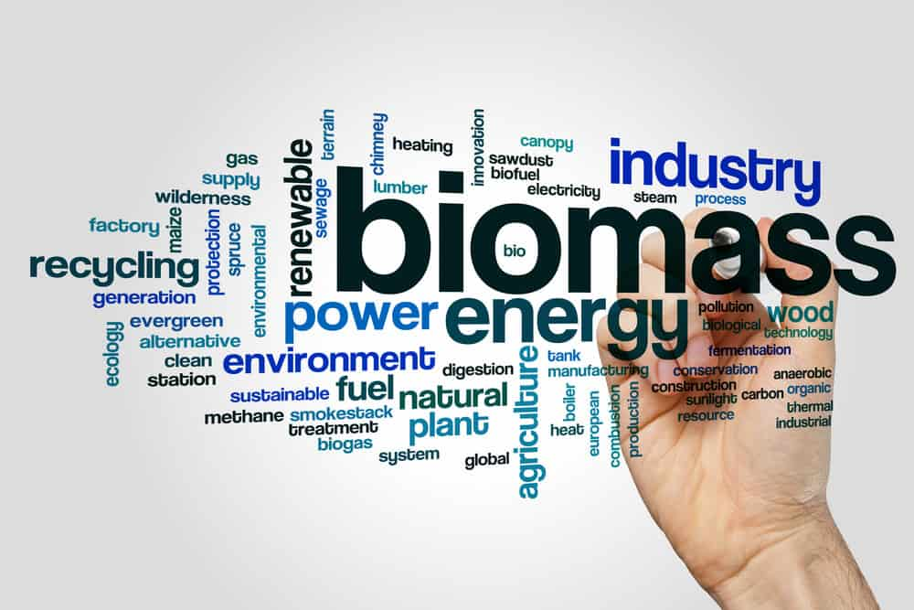 Commercial Biomass Boilers